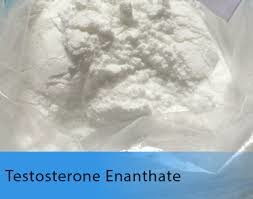 Quality Pó branco do teste E de Enanthate da testosterona do esteroide anabólico da testosterona for sale