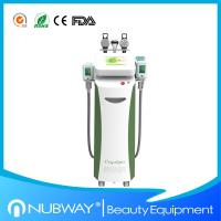 China 2014 Newest style multifunctional cryolipolysis slimming machine for weight loss on sale