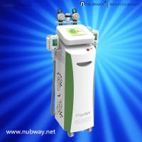 China Stationary Cryolipolysis Cellulite & Fat Removal/Slimming Machine wholesale