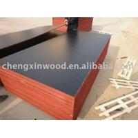 China shuttering plywood laminated plywood on sale