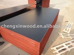 Quality shuttering plywood laminated plywood for sale