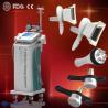 China Professional Weight Loss Cryolipolysis slimming machine Equipment, 110-220vac 1800W wholesale