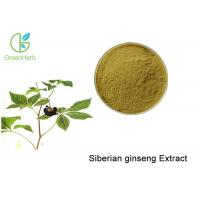 China Brown Powder Natural Plant Extracts / Siberian Ginseng Root Extract Anti - Fatigue wholesale