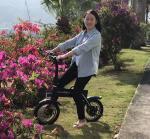China 150KG Loading Capacity Folding Electric Bike LED Lights With 12inch Wheel wholesale