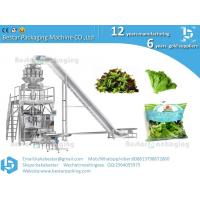 China Lettuce packaging machine  cabbage packaging machine wholesale
