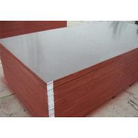 China Film Face Plywood wholesale