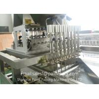Stainless Steel Automatic Linear Filling Machine With AC Servo Motor 100 - 500ml