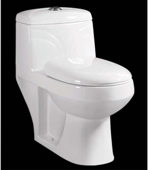 Dual Flush Toilet Images