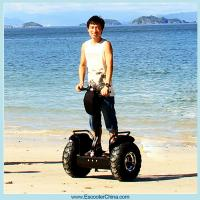 China Two wheel self balancing electric scooter 1000w cheap wholesale
