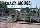 10KW Crazy Mouse Roller Coaster and Amusement Parks Roller Coasters for 8 Persons