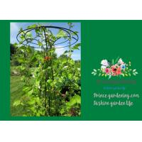 Flower Supports Plant Stakes , Tall Plant Support For Climbing Plants
