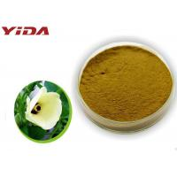 China Safety Pharmaceutical Grade Okra Extract Powder Activate Male Central Nervous wholesale
