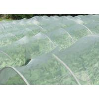 China Greenhouse Anti Insect Mesh Netting Pure HDPE 50 Mesh 125 gsm Insect Screen Mesh wholesale