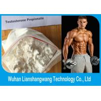 China Test Propionate Injectable Anabolic Steroids Bodybuildign Supplements CAS 57-85-2 wholesale