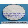 China Bodyingbuilingの白いステロイドのテストステロンEnanthate Cas 315-37-7無し wholesale