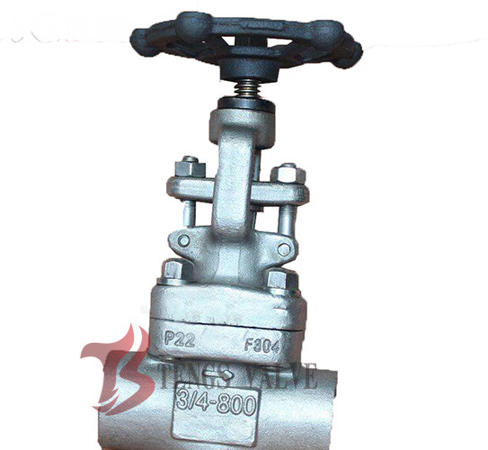 Quality 3/4 Inch Industrial Globe Valve 800LB , Forged Stainless Steel Globe Valve for sale