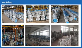 Shandong Anan Import and Export Co., Ltd.