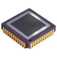 China Pico384 Gen2 384 X 288 – 17 µM Optoelectronic Components Thermal Imaging Detector wholesale