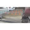 China Automatic Industrial Fruit Washing MachineHigh Pressure Spray Valves wholesale