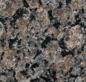 China Polished , honed Granite Natural Stone wall cladding / kitchen countertop , Caledonia wholesale