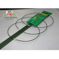 China Steel with PE Coated Tomato Spiral Garden Plant Support 120cm length wholesale