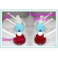 China ABS Ionic Spa Facial Steamer , Micro Mist Hair Steamer Of Magnetized Water wholesale