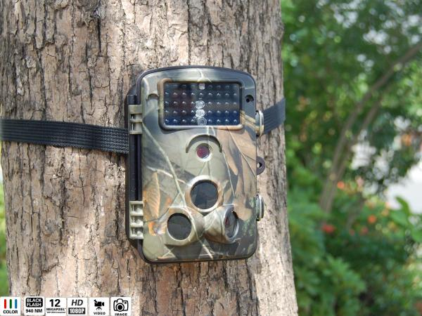 Quality 2.36 Inch LCD Screen Hunting Trail Cameras , Game Hunting Camera for sale