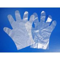 China Disposable Glove wholesale