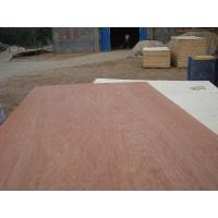China poplar Commercial plywood wholesale