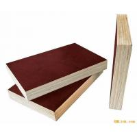 China Plywood with Film wholesale