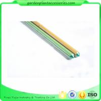 China 8mm Green Plastic Coated Bamboo Garden Stakes / 8 Foot Bamboo Pole wholesale