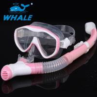 China Adults Dive Mask Snorkel Set With Panoramic Diving Mask & Dry Top Snorkel wholesale