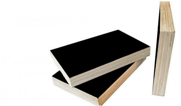 Quality shuttering plywood & marine plywood for dubai for sale
