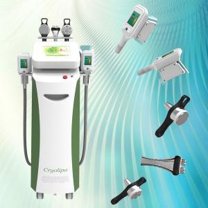 China Fast effective zerona lipo laser Vacuum Cavitation Cryolipolysis Fat Removal Device wholesale