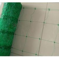 Green Plant Support Netting