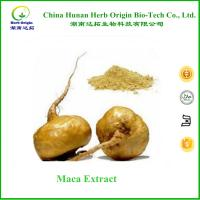 China chinese male enhancement maca extract powder 10:1 ,100% Natual maca root powder extract on sale