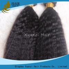 China Las extensiones indias peruanas rectas rizadas del pelo de la Virgen no alisan ningún liendre 8 - 32 pulgadas wholesale