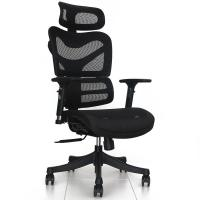 China 2017 hot design  ergonomic chair  cool mesh executive chair office furniture rolling mesh chair  executive office chair wholesale