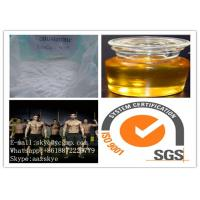 CAS 15262-86-9 Bodybuilding Anabolic Steroids , Testosterone Isocaproate For Men