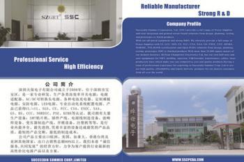 Succeedin Summer Corp.,Ltd
