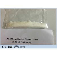 Buy cheap Male Primobolan E Legal Anabolic Steroids Powder Methenolone Enanthate CAS 303-42-4 for Muscle Gain from wholesalers
