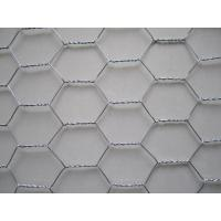 Hot-dipped galvanized Hexagonal Wire Netting for poultry enclosure