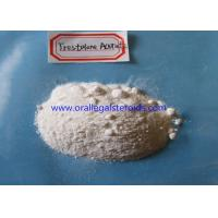 China Trestolone Acetate Powder TRT Steroids Androgen Replacement Therapy 99% Assay wholesale