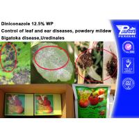 China 76674-21-0 Systemic Fungicides , Diniconazole 12.5% Wp Fungicide For Powdery Mildew wholesale