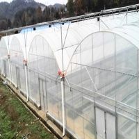 China Commercial Multi-Span/Single-Span hydroponics plastic Film Greenhouse for farming/Agriculture/Sale in China Factory on sale