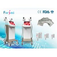 China 2 handles cryo laser surgery to reduce fat 15 inch screen hot sale factory directry on sale