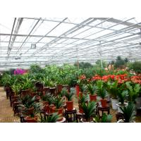 China Exhibition Multi Span Greenhouse , Glass Green Houses Hanging Load 0.15KN/M2 wholesale