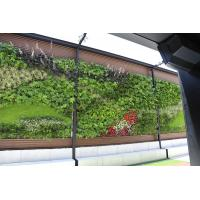 China Artificial Green Wall with Thick Fake Quality Plants for Vertical Garden Wall Decoration wholesale