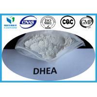DHEA Anti - aging Steroids , Dehydroepiandrosterone Raw Hormone Powder