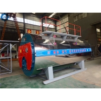 China China Highest Efficiency 96% Industrial Steam Boiler Diesel Fired With Condenser wholesale